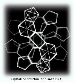 Crystaline Human DNA